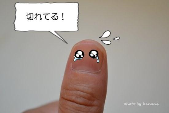 親指の爪を切った!