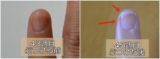 爪を伸ばすための指の使い方